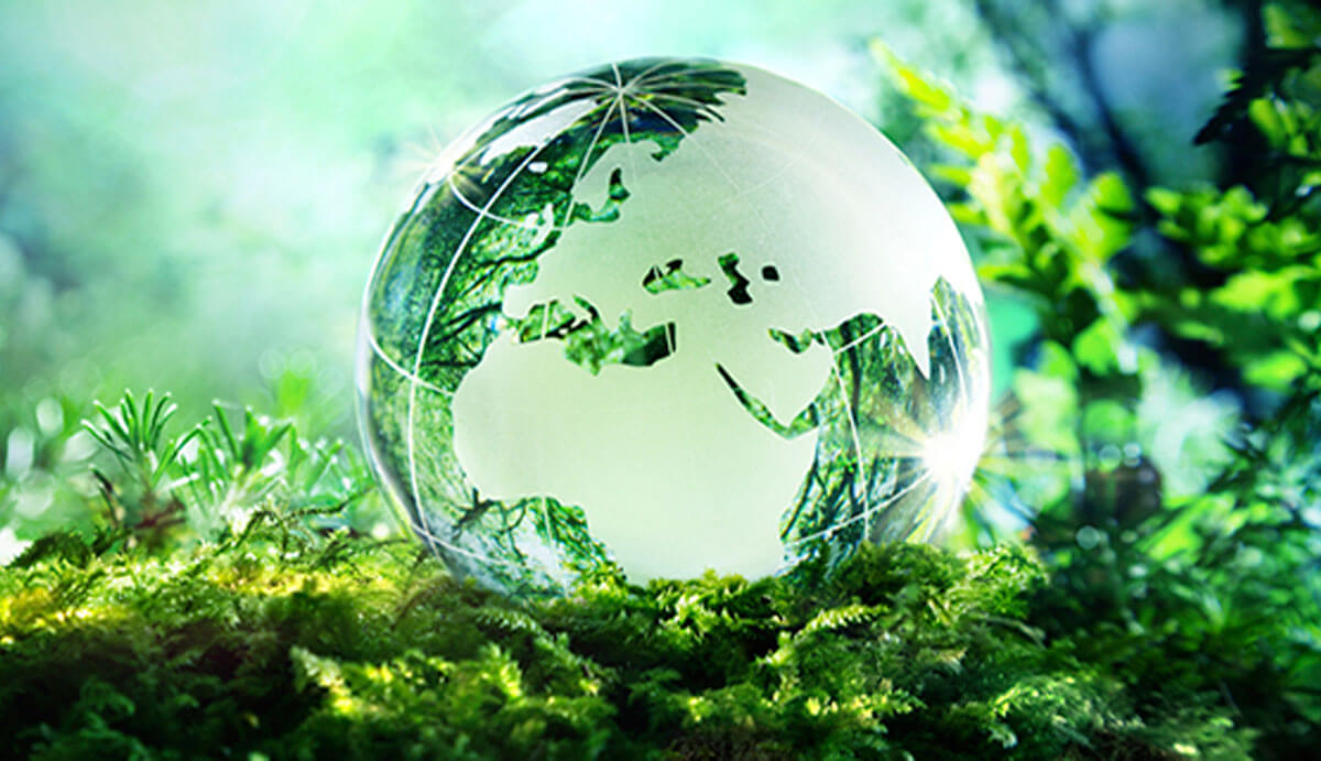 Save The Ozone Layer